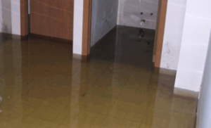 Undgå oversvømmelse og masser af vand i kælderen, når det regner kraftigt